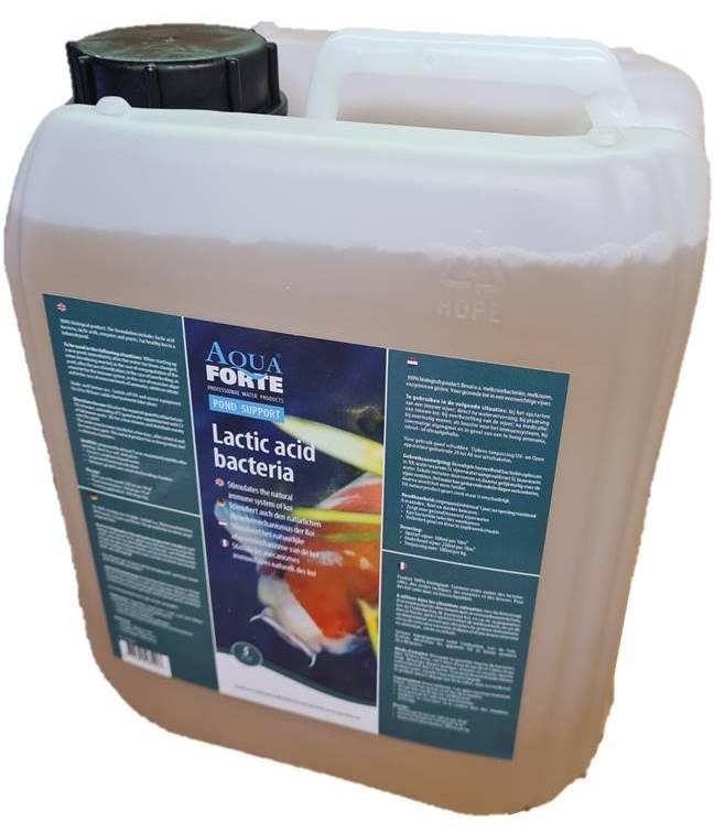 Aquaforte Melkzuurbacteriën
