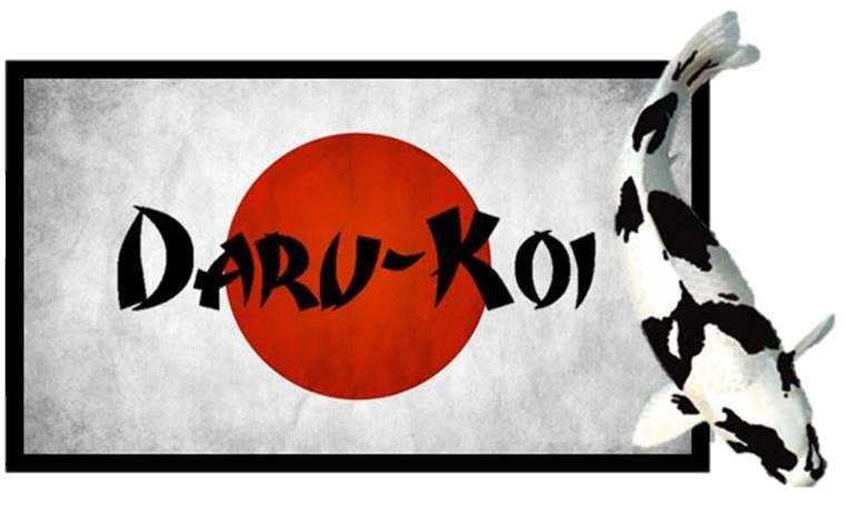 Daru-Koi koivoer