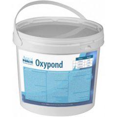 Aquaforte Oxypond anti draadalg 2,5 kilo