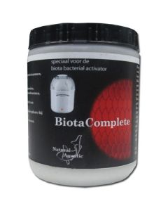 Biota_Bacterial__5207df3ed3b76.jpg