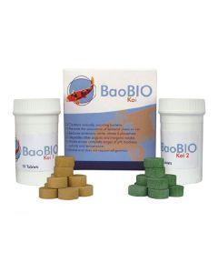 BaoBIO_Koi_bacte_5202af8e0fb76.jpg