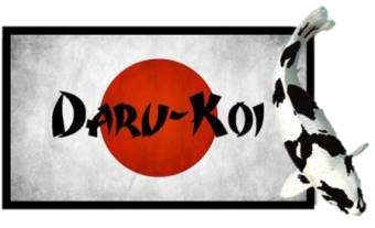 Daru Koi